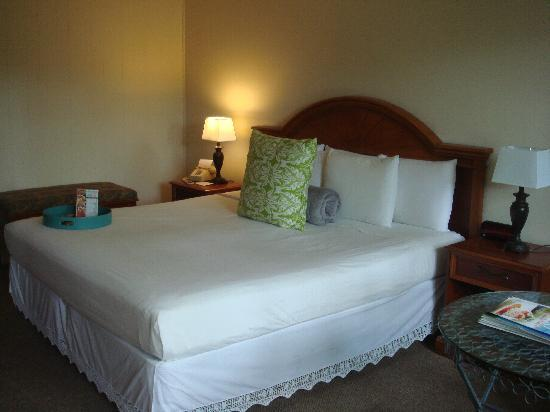 Naples Courtyard Inn: Room 115