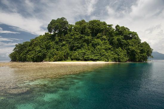 Walindi Plantation Resort: Visit beautiful islands