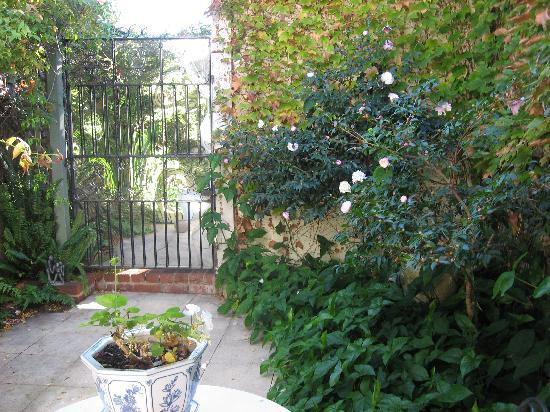Durack House Bed & Breakfast : Courtyard off the Garden Room