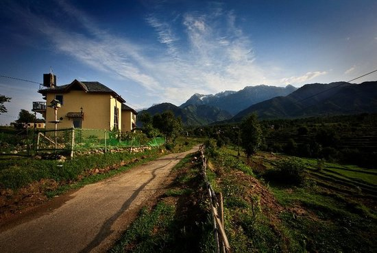 Seclude Palampur: Nestled in a valley- snow capped mountains on one side and fields all around