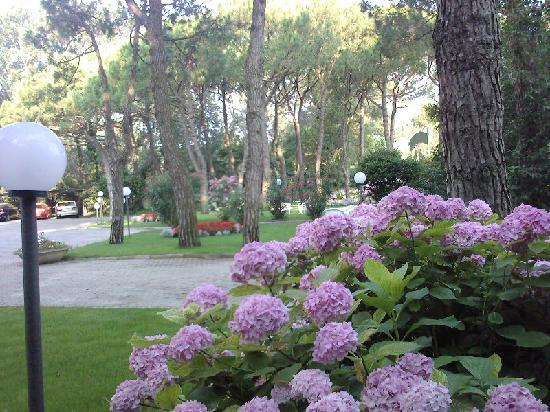 Hotel Beau Rivage Pineta: giardino