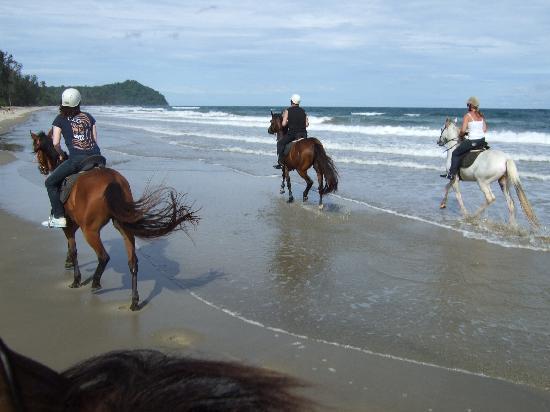 Seaventures Dive Rig: Friends horse riding