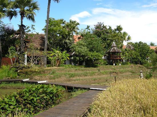 The Dhara Dhevi Chiang Mai: Reisfelder