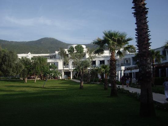 Hotel Samara: joli cadre
