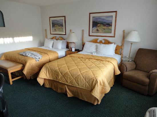Inn at Oxnard : les lits