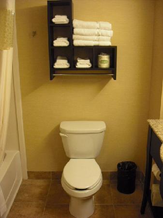 Hampton Inn & Suites Warren: Bathroom