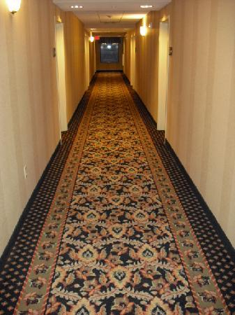 Hampton Inn & Suites Warren : 2nd floor hallway