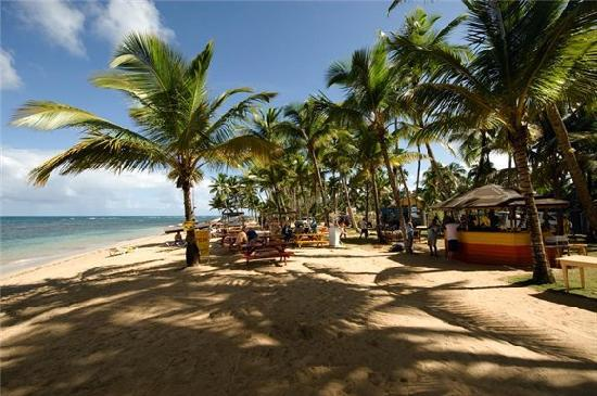 Grand Bahia Principe El Portillo: playas