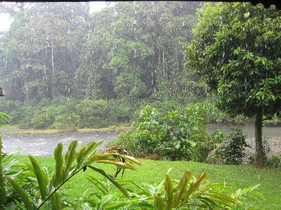 Danum Valley Conservation Area: Tropical rain storm - view from our chalet