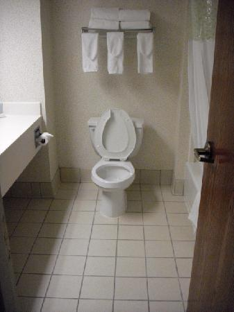Hampton Inn and Suites Cleveland Airport / Middleburg Heights: Large Bathroom