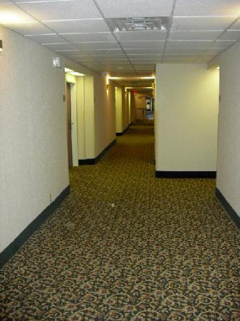 Hampton Inn and Suites Cleveland Airport / Middleburg Heights: 1st floor hallway