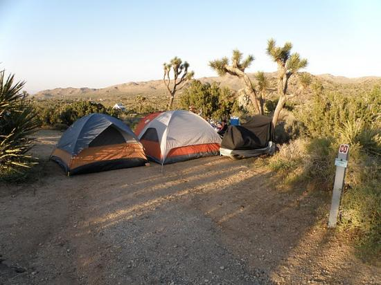 Black Rock Canyon Campground: Campsite #83