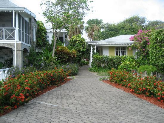 Nisbet Plantation Beach Club: The Great House (left) and the Front Desk (right)
