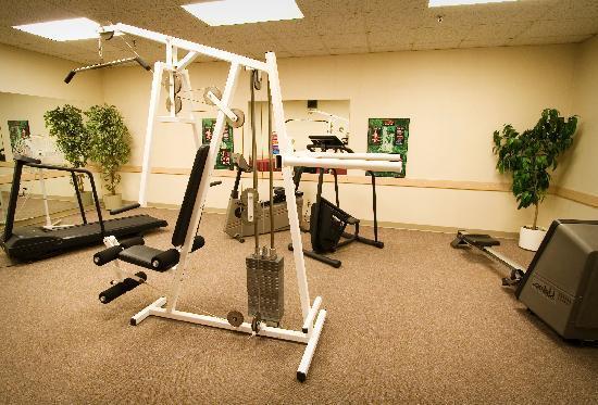 BEST WESTERN PLUS City Centre Inn: Fitness Room