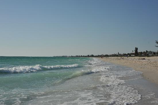 A Beach Retreat on Casey Key: The beach at A Beach Retreat