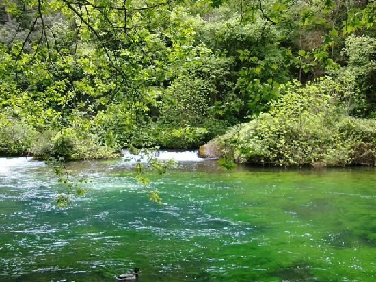 Provence, Frankrike: Fontaine de Vaucluse 1