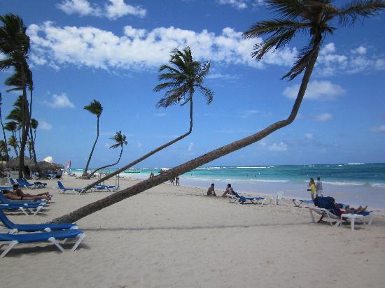 VIK Hotel Arena Blanca: near beach bar