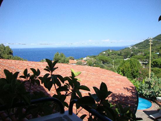 Hotel Gallo Nero : vista dal balcone della ns. camera