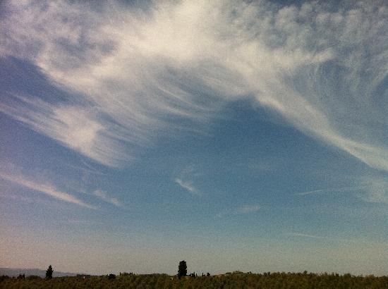 Torre di Ponzano - Chianti area - Tuscany -: ...