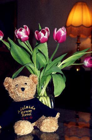 Adelaide House Hotel: Adelaide House Bear !