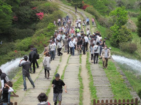 Tsujunkyo Bridge: 通潤橋を上部から
