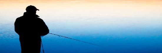 DawnMeadow Bed & Breakfast: fishing & angling