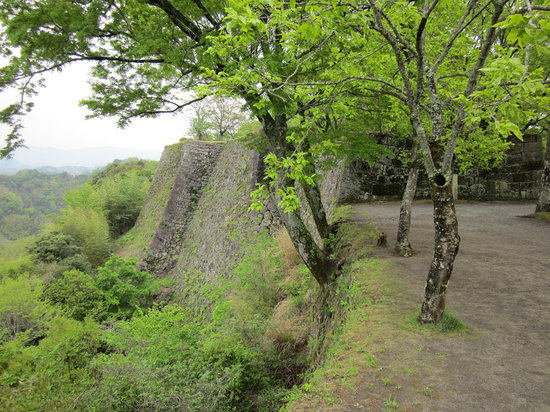 Ruins of Oka Castle: 岡城阯の石垣