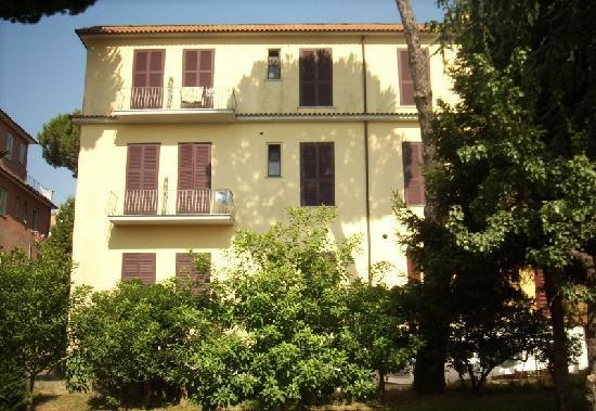 Hotel Delle Palme: Hotel camere su giardino