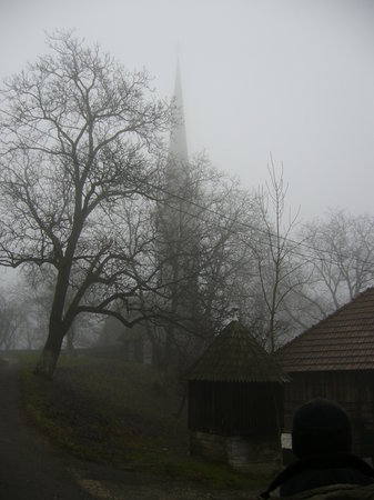 Surdesti Wooden Church