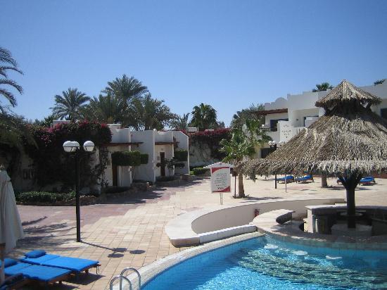 Hilton Sharm El Sheikh Fayrouz Resort : Ditto
