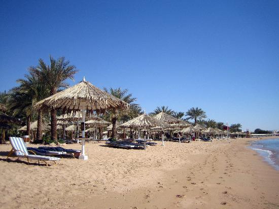 Hilton Sharm El Sheikh Fayrouz Resort: The Hilton's Private Beach