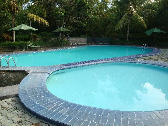 Poeri Devata Resort Hotel: プール