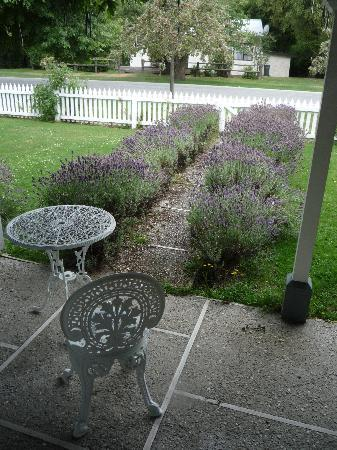Settlers Cottage Motel: Garden
