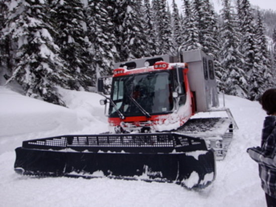 Great Northern Snowcat Skiing: our mode of transport