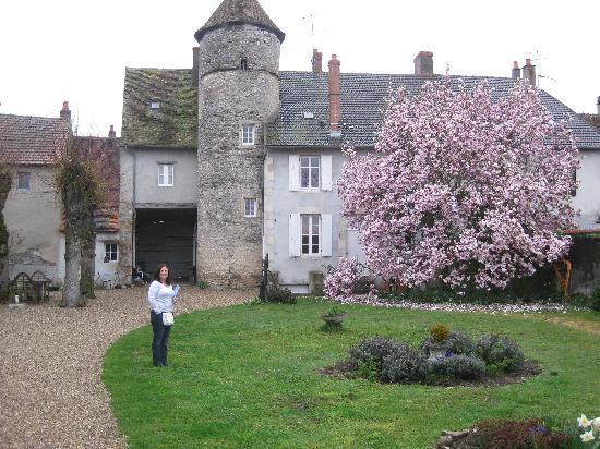 Le Relais de Chasse : The gardens and backyard.