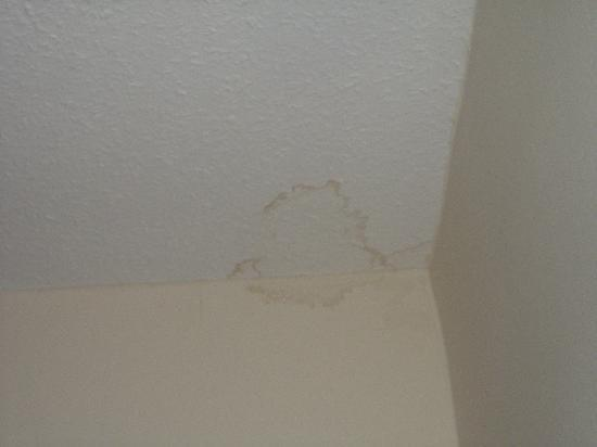 Angus Hotel: wall /ceiling stain 3