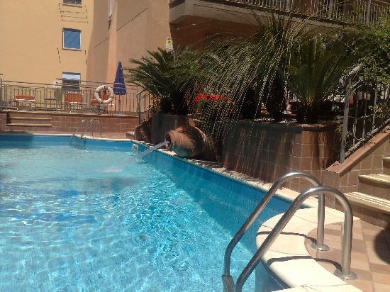 Michelangelo Hotel : small but nice swimmingpool