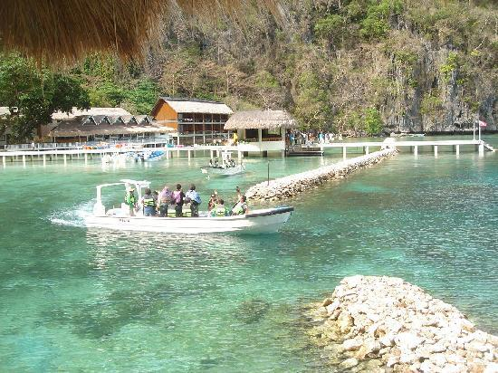 El Nido Resorts Miniloc Island: They'll wake you every morning!