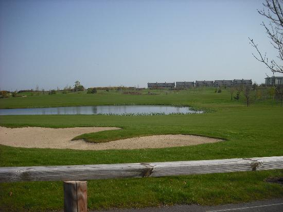 The Heritage Killenard : view of the golf course from the walking track