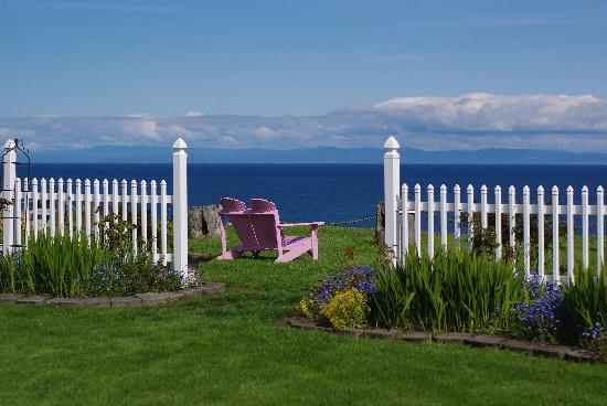 Sea Cliff Gardens Bed & Breakfast : My favorite view