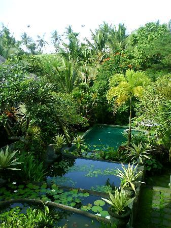 Kusuma Sari Villa & Spa: view over pool
