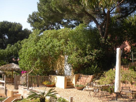 Porquerolles Island, Frankrike: jardin