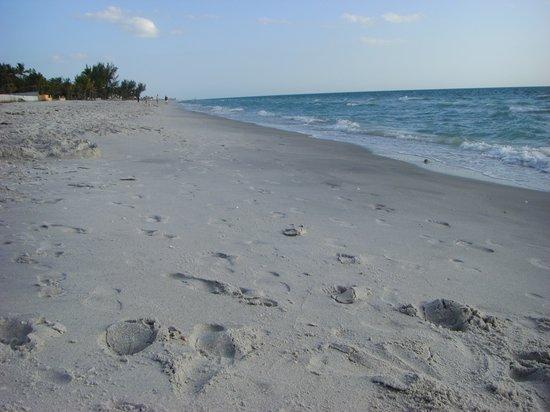 Gasparilla Island State Park: Empty beach