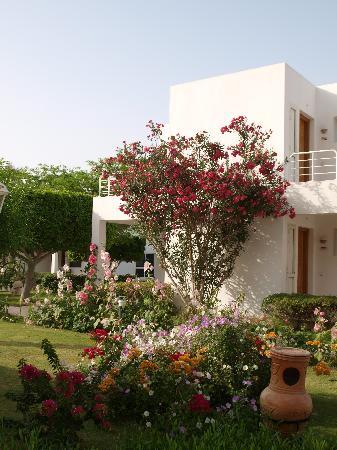 Maritim Jolie Ville Resort & Casino Sharm El-Sheikh : l'hôtel
