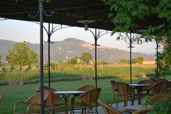 Cortona Resort - Le Terre dei Cavalieri : View of Cortona from the terrasse