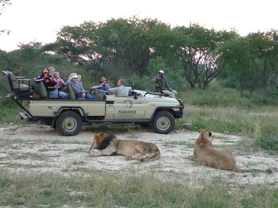Kapama Private Game Reserve, Sydafrika: Out on an evening game drive