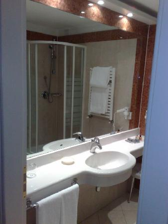 The Regency Hotel: Room 309, bathroom, nothing to complain
