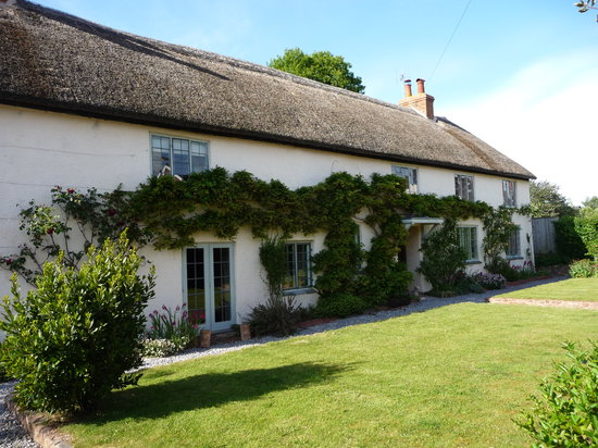 Williton, UK: The most beautiful cottage