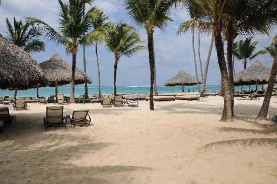 Paradisus Punta Cana Resort: Beach, Paradisus, Punta Cana