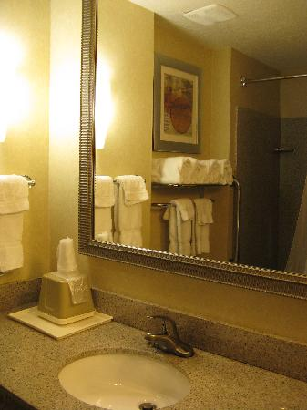 Comfort Suites - Forsyth: Bath